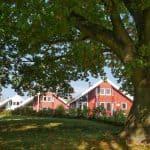 Ferienhaus Seerose 1. Reihe zum See mit Whirlpool in Wendisch Rietz