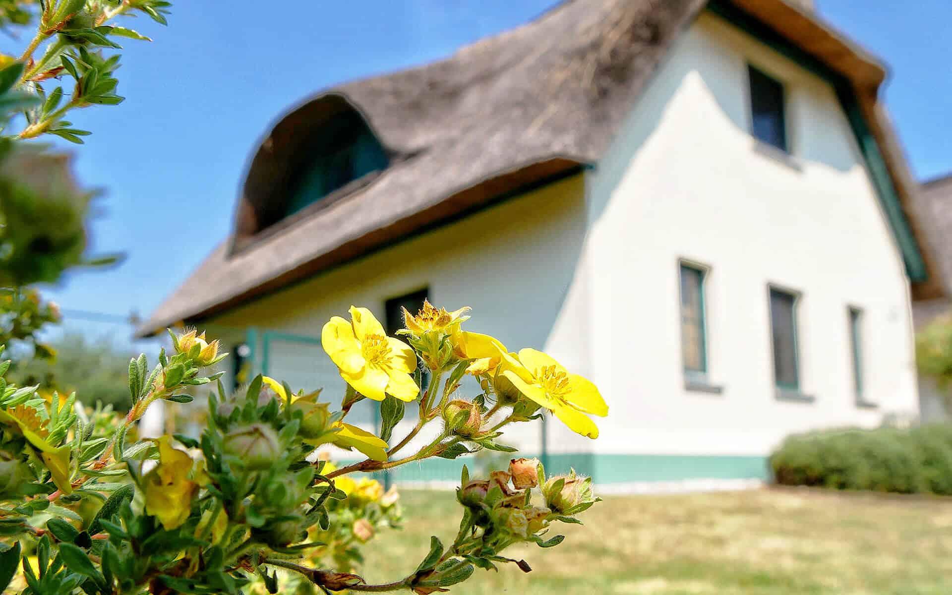 Ferienhaus Reethaus inkl. Nebenkosten in Wendisch Rietz